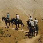 Конные прогулки в горах Узбекистана