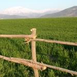 """Фото-тур """"Лики Небесных гор"""" — северный маршрут"""